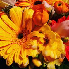 Composizione di fiori 🌺