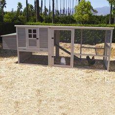 Loyola Chicken Coop