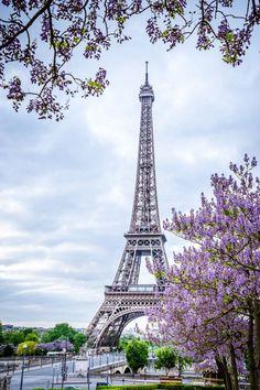Eiffel Tower Photography, Paris Photography, Nature Photography, Paris Wallpaper, City Wallpaper, Wallpaper Backgrounds, Paris Pictures, Paris Photos, Beautiful Nature Wallpaper