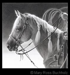Mary Ross Buchholz Art. She works in pencil, graphite and charcoal.
