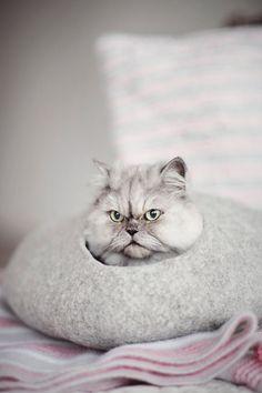 Cat bed Wool cat cave Grey felt cat house by ShpilkaFelt