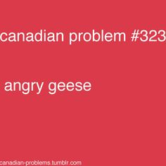 I'm not Canadian but I do live pretty close to Canada so yeah! But this Is so true Canadian Memes, Canadian Things, I Am Canadian, Canadian Girls, Canadian Humour, Canada Jokes, Canada Funny, Canada 150, Canadian Stereotypes