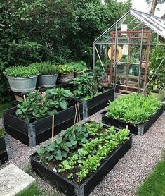 Best 52 Vegetable Garden Design Ideas for Green Living - Bepflanzung Veg Garden, Vegetable Garden Design, Garden Types, Garden Cottage, Garden Edging, Vegetables Garden, Vegetable Gardening, Indoor Garden, Potager Garden