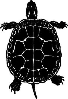 Public Domain Turtle Image - Silhouette! - The Graphics Fairy