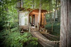 Coolest Cabins: Fairytale treehouse cabin