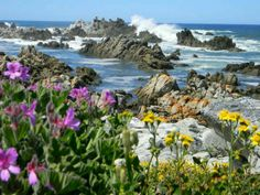 Kleinmond in Western Cape Area Overview African Holidays, South Afrika, Out Of Africa, Beautiful Places To Visit, Africa Travel, Cape Town, Amazing Nature, Live, Continents