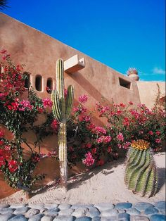 Southwest Xeriscaping......