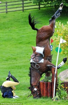 Why I don't jump!  Even the best in the world make mistakes and my horse doesn't deserve to suffer the consequences.