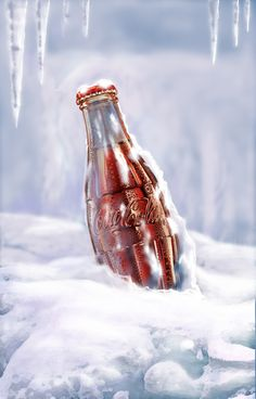 Still Life Art_Bottle of Coca-Cola