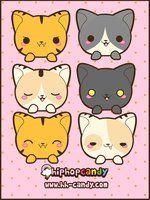 Kitties Kitties Kitties by *A-Little-Kitty on deviantART