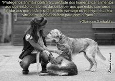 Lu Amorim - Google+
