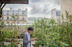 À Paris et en Île-de-France, la possibilité d'une ville végétalisée et résiliente, où se côtoient hommes et plantes, a déjà fait son trou. Les initiatives citoyennes sont légions, autant que les modèles d'action et les « green sensibilités » des acteurs, interconnectés et profondément urbains, d'une prise de conscience dopée à la sève.