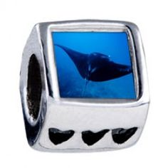 Ocean Stingray Photo Heart Charms  Fit pandora,trollbeads,chamilia,biagi,soufeel and any customized bracelet/necklaces. #Jewelry #Fashion #Silver# handcraft #DIY #Accessory