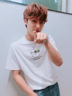 Pointing is bad Mingyu! Woozi, Mingyu Wonwoo, Seungkwan, Mingyu Seventeen, Seventeen Debut, Vernon, Rapper, Hip Hop, Kim Min Gyu