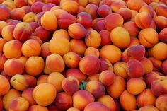 I LUV juicy Peaches - can't wait to get some in season!