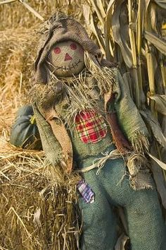 Scarecrow DIY - Check out this sight for scarecrow ideas.