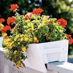 Garden idea: How to make a planter box for your deck - Canadian Living