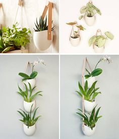 Farrah Sit of design studio Light Ladder has created a collection of ceramic wall planters that are combined with other materials like rope or leather to create contemporary art-like installations that show off your small plants. Tropical Backyard, Backyard Garden Design, Modern Backyard, Garden Retaining Wall, Garden Path, Herb Garden, Indoor Garden, Ceramic Wall Planters, Garden Planter Boxes
