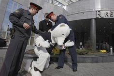 """An environmental activist in an animal costume is detained by police during a protest outside a hotel hosting the """"Russian Arctic Oil and Gas"""" business conference in Moscow April 17, 2012.   REUTERS/Denis Sinyakov"""