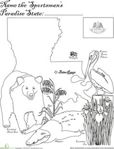 1000 images about road trip on pinterest reading for Louisiana state symbols coloring pages