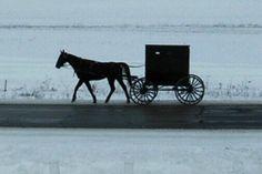 Amish horse and buggy near Kalona, Iowa
