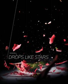 Drop Like Stars by Rob Bell  Excellent book for helping to find meaning in suffering.