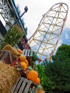 HalloWeekends at Cedar Point, Sandusky, OH. Favorite time of year! Amusement Park Outfit, Best Amusement Parks, Amusement Park Rides, Lake Erie Ohio, Adventurous Things To Do, Cedar Point, Roller Coasters, Carousels, Mecca