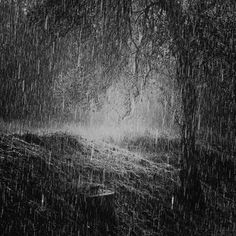 """Melancholy in the Form of a Rainstorm"" - Casey O'Neill - Grief -  ""When you cry like a rainstorm and you howl like the wind."