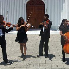 Bridal Chorus Wedding String Quartet By Music Project