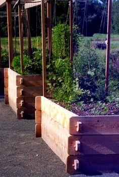 love the raised garden beds