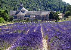 Monastery of monks who take oath of silence in the Provence area.  We visited here with Lulu May 11.