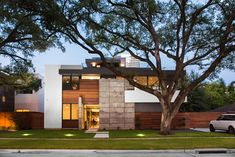 The Drexel House is a quiet, modern addition to the neighborhood and was designed to preserve the large oak tree existing on the front of the lot.