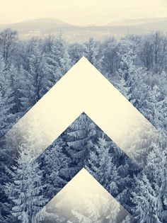 I'm really falling in love with geometry overlaid photography. Such an elegant design concept. This one I like more than most I've seen because the graphic shapes almost become part of the forest itself.