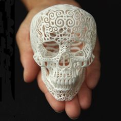 3D-Printed Crania Anatomica Filigre Skull - Product Detail Annie should have this.