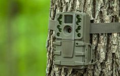 We have gathered the top 10 best trail cameras for your hunting experience. Improve your hunting skills by utilizing one of these trail cameras. http://www.10hunt.com/best-trail-cameras/