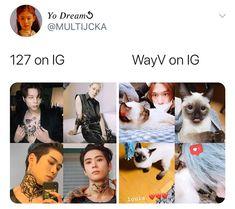 Lucas Nct, Winwin, Taeyong, Jaehyun, Nct 127, Rapper, Nct Life, Funny Kpop Memes, Entertainment