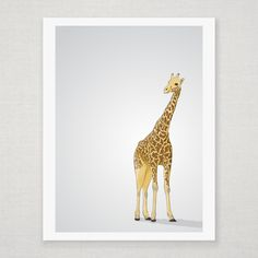 Giraffe - Illustrated Art Print