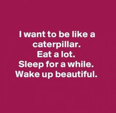 44 Trendy Ideas for quotes funny hilarious lol awesome Great Quotes, Quotes To Live By, Me Quotes, Funny Quotes, Inspirational Quotes, Cant Sleep Quotes Funny, Food Quotes, Poetry Quotes, Sarcasm