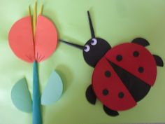 uğur böceği ve çiçek