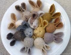 Little Cotton Rabbits!