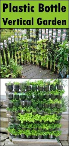 Grow Your Own Kitchen Garden by Making a Vertical Planter from Recycled Soda Bottles(Diy Garden Vertical) Vertical Vegetable Gardens, Vertical Garden Diy, Backyard Vegetable Gardens, Diy Garden, Garden Planters, Kitchen Garden Ideas, Pallet Planters, Gardening Vegetables, Garden Landscaping