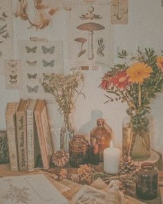 #cottagecore #aesthetic #vsco #flowers #nature #studies #herbology #cottage #cozy #cute #soft #republish #repost | cottagecoreee