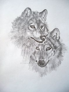two wolves by sarawolfe.deviantart.com on @deviantART