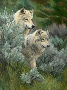 Wolves...  Painting?