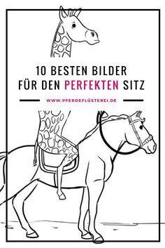 Die besten Bilder für einen guten Reiter Sitz - einfach erklärt #reiten #pferde