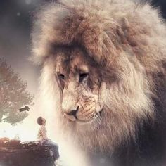 Power in itself is not a blessing unless it is used to protect innocents. by Jonathan Swift Lion And Lioness, Leo Lion, Lion Of Judah, Giant Animals, Cute Animals, Lion And Lamb, Lion Love, Lion Wallpaper, Tribe Of Judah