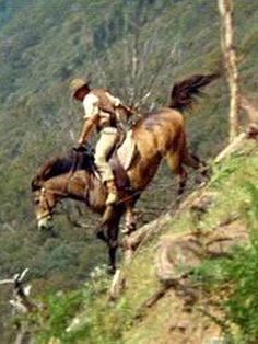 And the Snowy River riders on the mountains make their home Where the river runs those giant hills between I have seen full many horsemen.But never yet such horsemen have I seen The Man From Snowy River. Pretty Horses, Beautiful Horses, Matilda, Man From Snowy River, Horse Movies, Western Movies, Horse Pictures, Western Art, Horse Riding