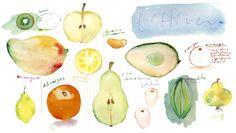 Winter fruit by Lucile Prache