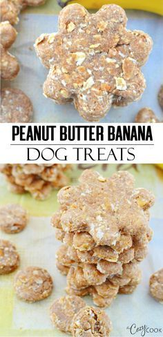 Peanut Butter Banana Dog Treats Peanut Butter Banana Dog Treats These homemade dog treats are filled with peanut butter, mashed banana, and oats! These make great gift ideas and are a fun baking activity for adults and kids! Banana Dog Treat Recipe, Easy Dog Treat Recipes, Banana Treats, Healthy Homemade Dog Treats, Sweet Potato Dog Treats, Sweet Potatoes For Dogs, Puppy Treats, Diy Dog Treats, Diy Dog Gifts