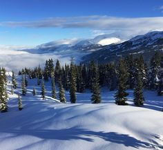 Annie Boulanger-  Just perfect Annie conditions today.Whistler...
